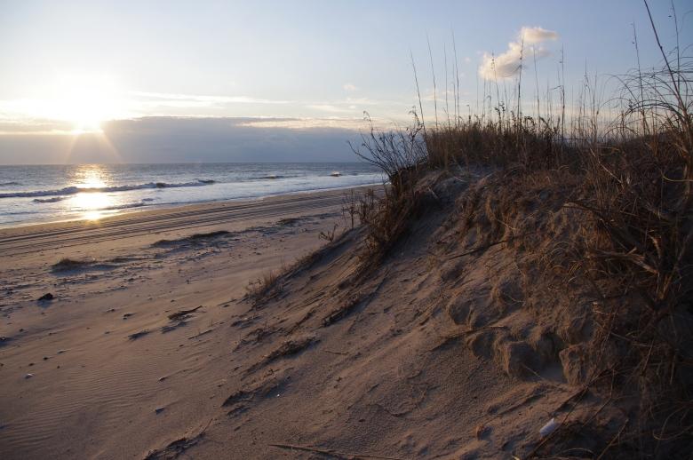 Dunes on the Ocean (John Gresham/DCR)